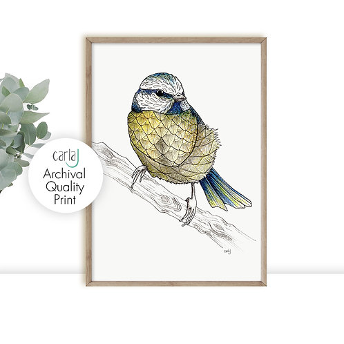 Blue Tit art print, British garden birds, Wild birds for the Modern Farmhouse