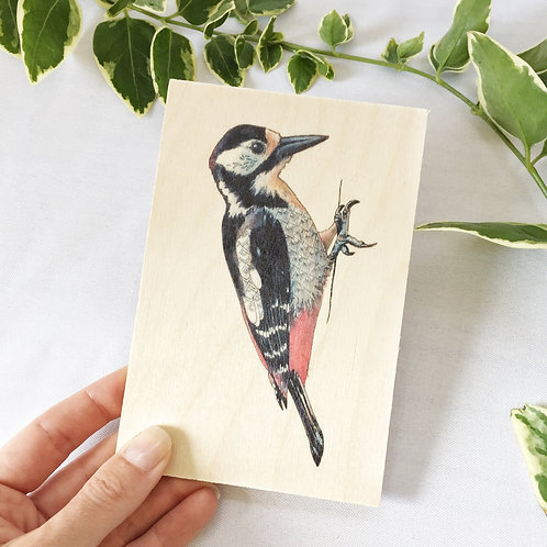 Woodpecker Card, Wooden Postcard, Woodpecker Gifts, Wood Post Card, Nature Cards