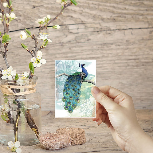 Tiny Prints, Peacock Art, ACEO in the UK, Miniature Prints, Small Peacock Decor