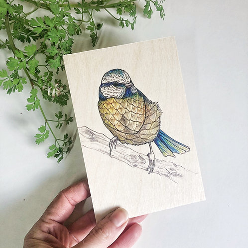 Blue Tit Wooden Postcard, British Garden Birds Print on Wood, Bird Lover Gift