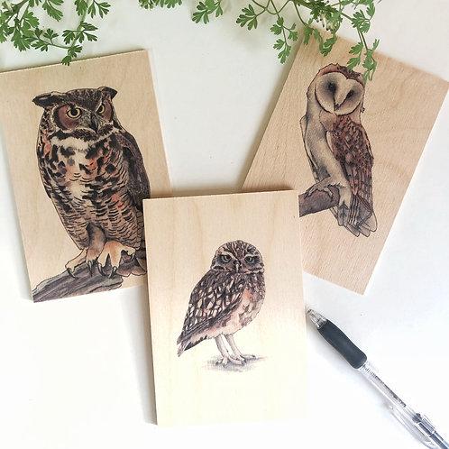 Wooden Postcard Set of 3 Owls, Bird Lover Owl Gift, Bird on Wood Nature Decor