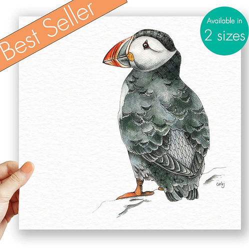 Puffin print bird art illustration art print Puffin gifts nature wall art bird l