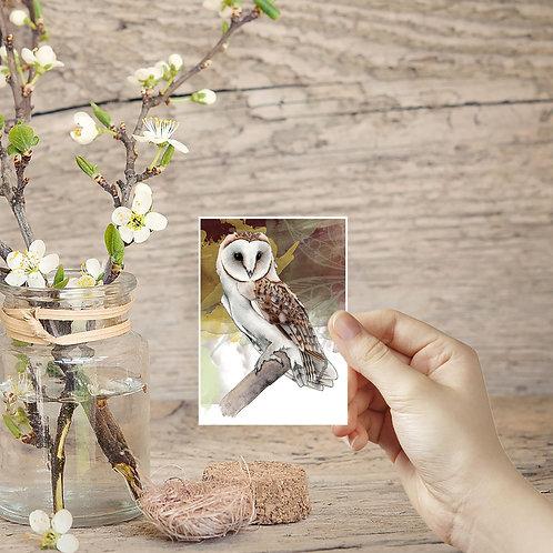 Miniature Barn Owl Print, Bird of Prey Tiny Prints, ACEO in the UK, Small Owl Ar