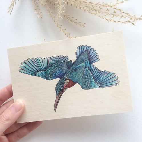 Kingfisher Wood postcard, Just Because Card, Nature Cards, Kingfisher Art, Bird
