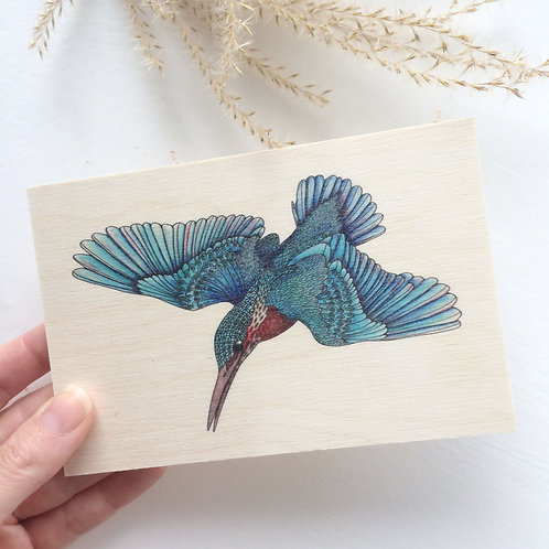 Wooden Postcard Kingfisher Art, Bird Gifts Print on Wood
