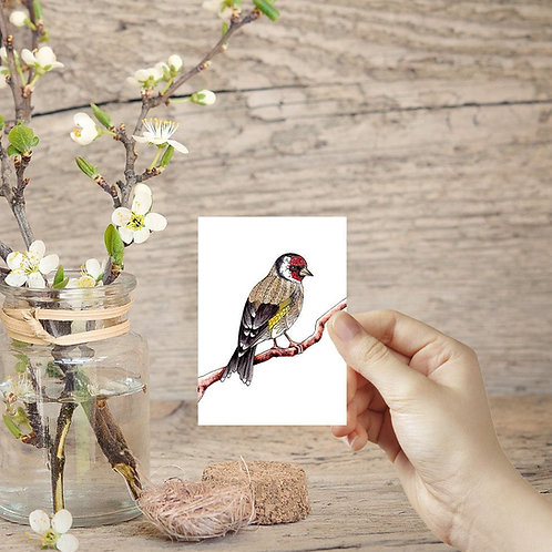 Tiny art print ACEO print miniature prints Goldfinch print mini birds