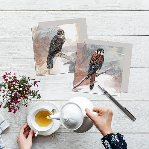 Birds of prey art cards, Set of 2 bird cards, Birdwatching gift