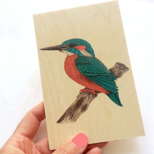 Wood Postcard, Kingfisher Wooden Postcard, Nature Bird Gifts, Just Because Card