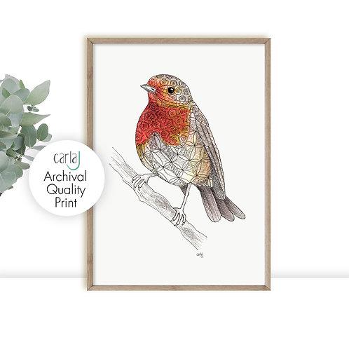 Robin Red Breast art print, Robin gifts, British garden birds illustration