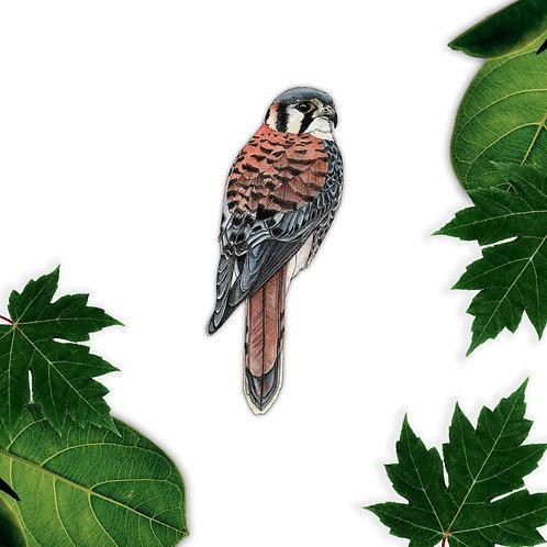 Kestrel Wall Decal, Bird Vinyl Sticker, Bird of Prey Nature Art Stickers