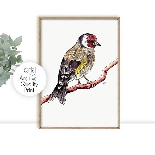 Goldfinch print, British garden birds, Nature art, Bird illustration print, Bird