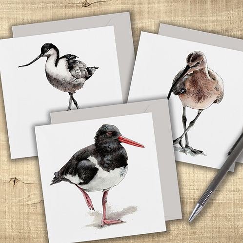 Set of 3 wading bird greeting cards, Avocet, Curlew, Oystercatcher, nature inspi