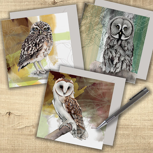 Greeting card set of 3 owls, Barn Owl card, Birds of Prey art cards for the bird
