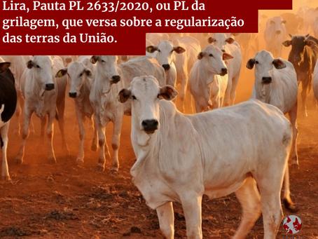 """Presidente da Câmara dos deputados,  pauta PL 2633/2020, ou """"PL da Grilagem"""""""