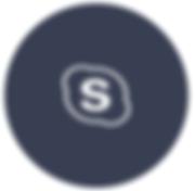 Videxio Skype Logo