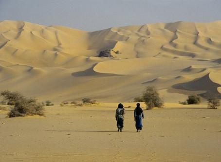 """""""Sob o céu que nos protege"""" Uma trajetória pelo Niger no coração do Saara"""