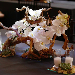 Gorgeous centerpiece with manzanita grape wood and orchids