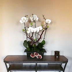 Orchid arrangement.jpg #moonatelier_la .jpg_