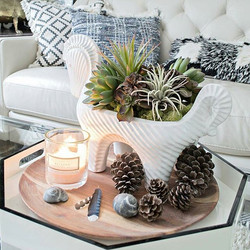 Succulent arrangement.jpg #moonatelier_la .jpg_