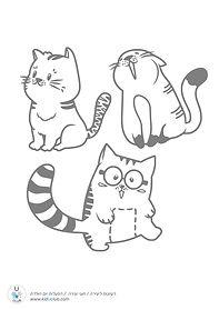 cute-cats1.jpg