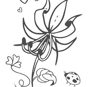 flower&bug.jpg