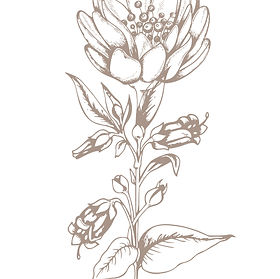 vintage-flower.jpg