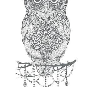 owl2_hard.jpg