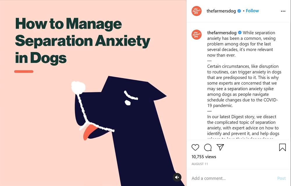 instagram marketing example