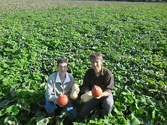sarthe, courges bio, production bio, agriculture, ferme bio, fournisseur bio