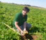 fournisseur biologique, fournisseur pomme de terre bio, fournisseur patate bio, fournisseur, producteur bio, producteur patate bio