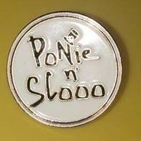 PnS Pin Diecast.jpg