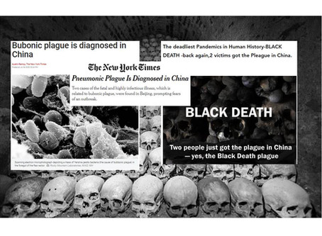 Black Death killed 50 million people in 14th century,Now called Bubonic plague is diagnosed in China
