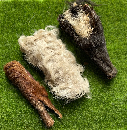 3 Dried Cow Headhide Pieces With Fur