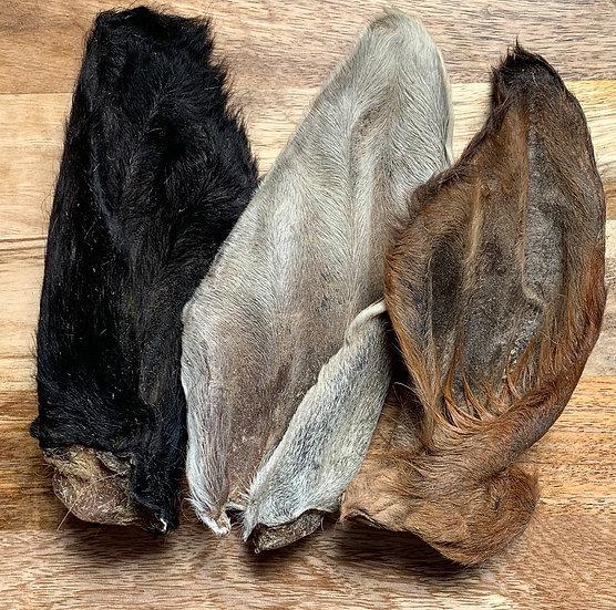 3 Hairy cow ears