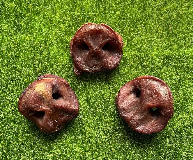 10  Natural Pig snouts