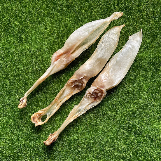 10 Natural Rabbit Ears- No Fur