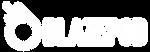 BP Logo_Horizontal_White.png