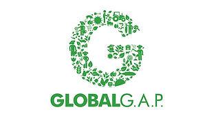 Certificaciones de calidad e inocuidad G