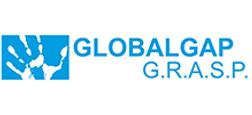 globalgapgrasp.png
