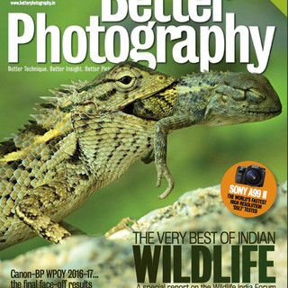 Betterphotography Published May 2017