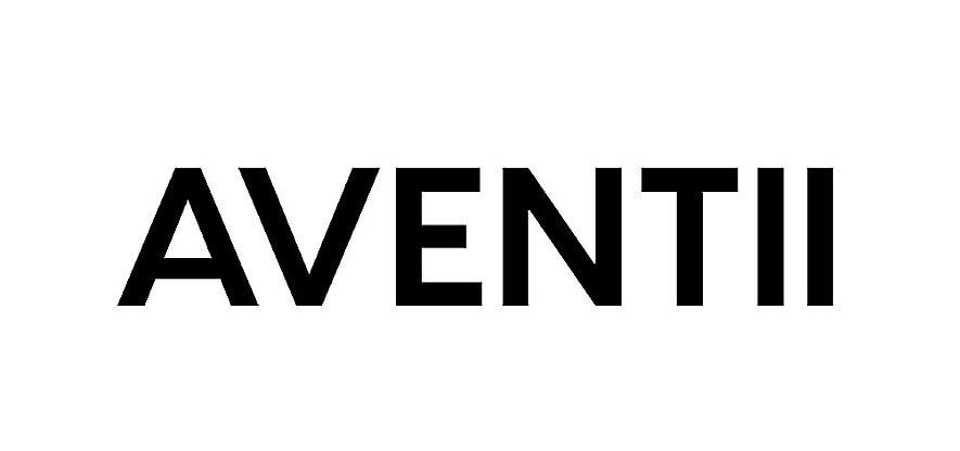 Copy of AVENTII-3_edited.jpg