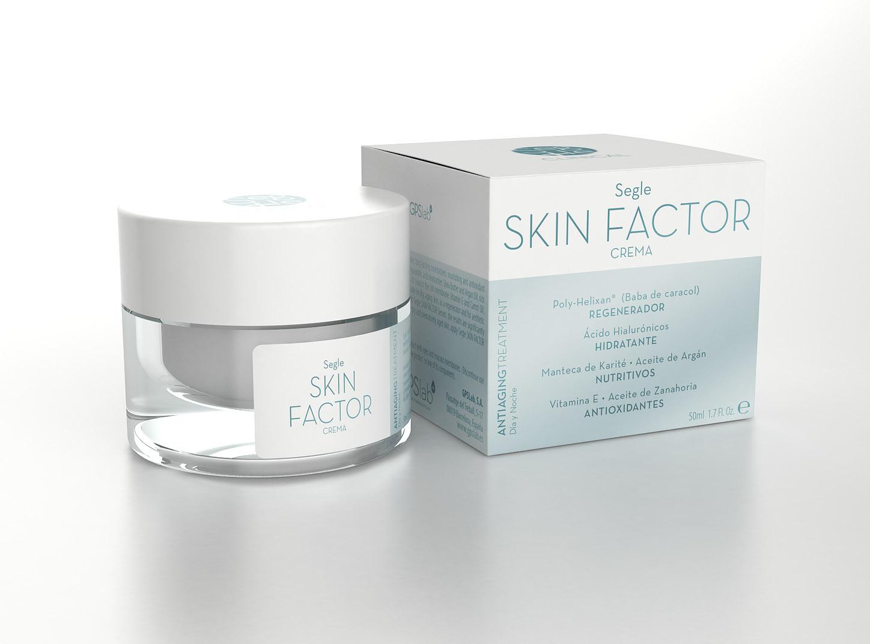 Skin Factor