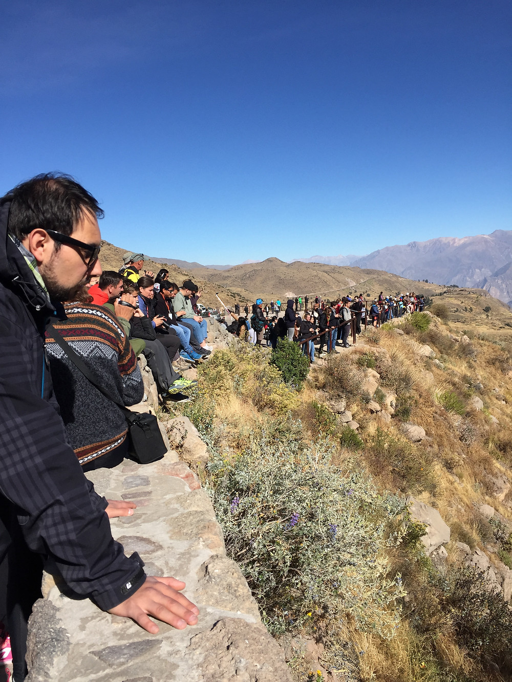 People watching the condors