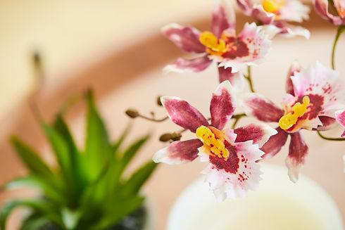 Webshop zijden bloemen