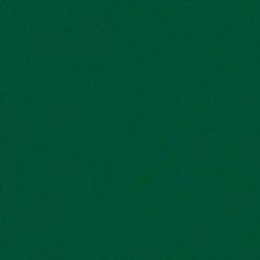 AP 43 Zelená