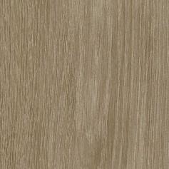 SAL 41 Dub sheffield šedý