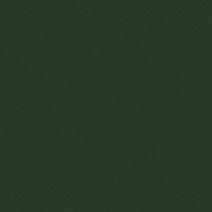 AP 30 Tmavý zelený