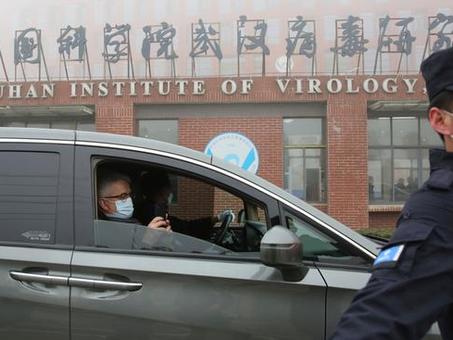 OMS en Wuhan: entre las certezas y las dudas