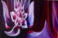 Dahlia Cluster.jpg