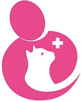 Veterinario per gatti